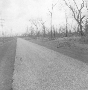 Charles Point Road heading to the Jetty - Jan 1975